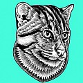 Small wild cats - Art Group